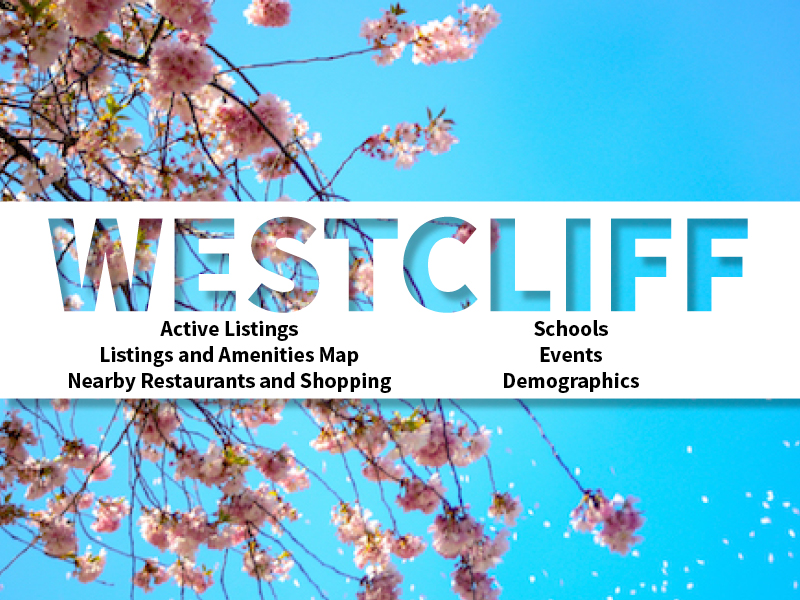 Westcliff Real Estate Neighborhood in Amarillo page featuring neighborhood description, amenities and listings map, nearby restaurants, shopping, events and schools, and neighborhood demographics